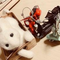 ♪猫ライダーを作る前に、植毛始めましたの記事に添付されている画像