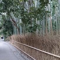 野宮神社の記事に添付されている画像