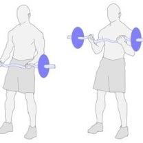 2月17日(日)腕のトレーニングの記事に添付されている画像