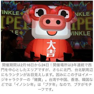 【台湾】台北ランタンフェスティバル2019に行ってきたの記事に添付されている画像