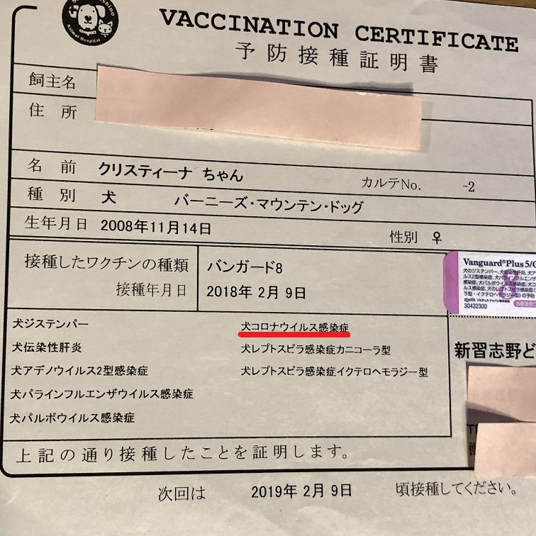 犬 の ワクチン 種類