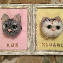 羊毛ニャンズ☆の記事に添付されている画像