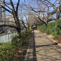 2月17日 目黒川に沿って西郷山公園への記事に添付されている画像
