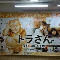 映画「トラさん 僕が猫になったワケ」の記事に添付されている画像