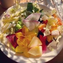 季節の野菜。の記事に添付されている画像