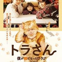 トラさん〜僕が猫になったワケ〜の記事に添付されている画像