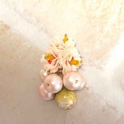 桜♡♡伊良湖の記事に添付されている画像