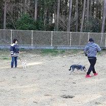☆グループレッスン☆の記事に添付されている画像