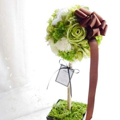 INIS×Berries グリーントピアリーの記事に添付されている画像
