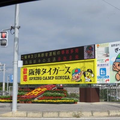 沖縄旅行 4日目 宜野座キャンプへ…。の記事に添付されている画像