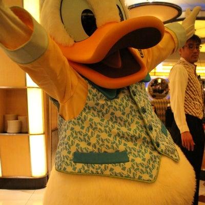 シェフミッキー劇場③ IN1/6ー7お泊まりディズニーの記事に添付されている画像