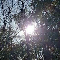 大天使ミカエルの光の記事に添付されている画像