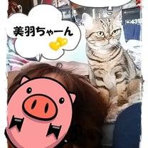 ツーショット♡(o^─^o)ニコッ♡の記事に添付されている画像