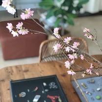 さくら咲くの記事に添付されている画像
