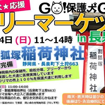 2月24日  長泉町で大フリマ☆ 新品、美品、犬服、人冬物も!の記事に添付されている画像
