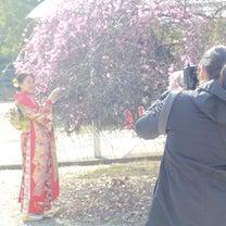 成人式後撮り|ロケーション撮影の記事に添付されている画像