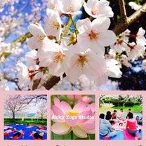 【告知】3/30(土)10:00〜大分・日田 お花見ピクニックヨガイベントの記事に添付されている画像
