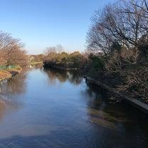 水元公園に。の記事に添付されている画像