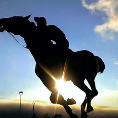 中山記念(GII)と阪急杯(GIII)の有力馬と穴馬紹介ですっ♪の記事に添付されている画像
