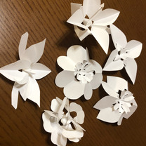 新しいアロマの楽しみ方 折花講習会の記事に添付されている画像