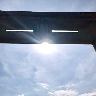 日差しの記事に添付されている画像