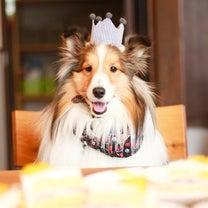冬生まれお誕生会でケーキに夢中。の記事に添付されている画像