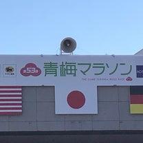 【レポ】青梅マラソン2019(前編)の記事に添付されている画像