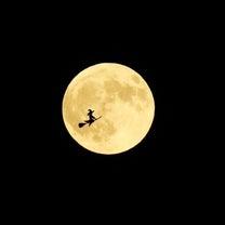 乙女座満月~道は自然と絞られてくるの記事に添付されている画像
