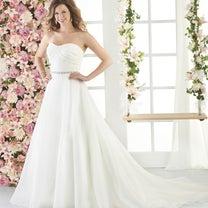 新作ドレス13号・15号・17号・19号・21号の記事に添付されている画像
