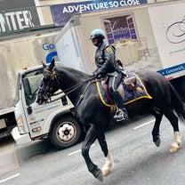 駐車違反したら、デッカい馬に怒られる街の記事に添付されている画像