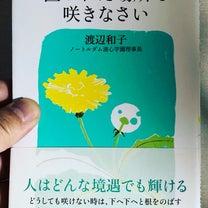 置かれた場所で咲きなさいの記事に添付されている画像