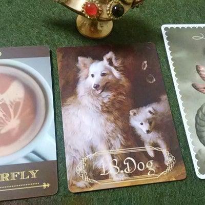 ルノルマンカード/コーヒーカード/オラクルカードで読む今日の早起き占いの記事に添付されている画像