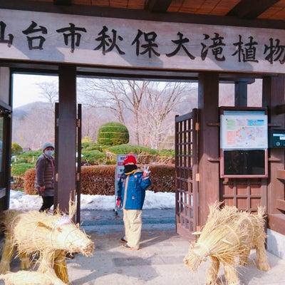 ☆秋保大滝植物園(雪まつり)☆の記事に添付されている画像
