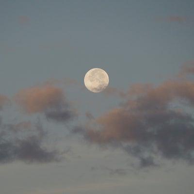 どんな月でも、いい月なのに!満月以外も楽しもうよの巻きの記事に添付されている画像