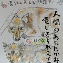 ★2月22日(金)期限★長門のワンちゃん2匹を助けて下さい!の記事に添付されている画像