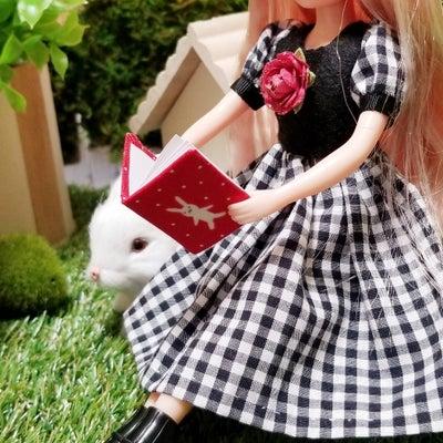 ミニノートとピアスを ns doll 様に納品しました。の記事に添付されている画像