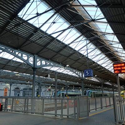 乗客は鳩?onceダブリンの駅での記事に添付されている画像