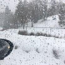 雪の記事に添付されている画像