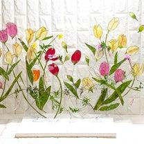 サンケイリビング神戸教室で春の体験レッスン会を開催しますの記事に添付されている画像
