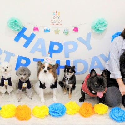 ♡ユルくん HAPPY BIRTHDAY♡の記事に添付されている画像