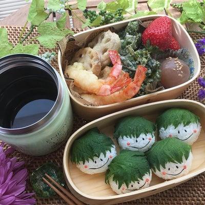 天ぷら&紫蘇おにぎり弁当~大葉が衝撃プライスだった!~の記事に添付されている画像