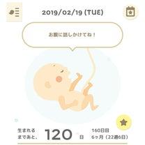 【妊娠22週】性別判明!!の記事に添付されている画像