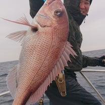 2月19日(火) 本日の釣果の記事に添付されている画像