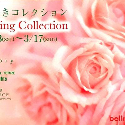 Spring Collection イベントのお知らせ★豊橋広小路店の記事に添付されている画像