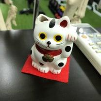 福を招く猫の話の記事に添付されている画像