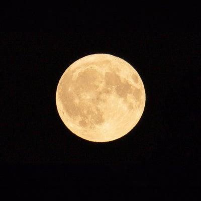 おとめ座満月の記事に添付されている画像