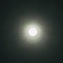満月の夜 日本食レストラン MINATOの記事に添付されている画像