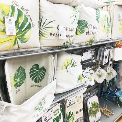 ダイソー(☆∀☆)新商品で、癒しのKitchen。の記事に添付されている画像
