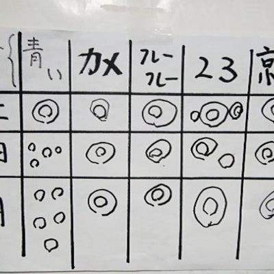 90才のフーちゃんと百人一首と新幹線の駅名の記事に添付されている画像