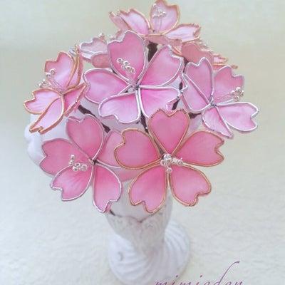 桜とクランツの記事に添付されている画像